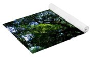 The Angel Oak In Summer Yoga Mat