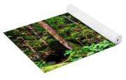 The Enchanted Forest Yoga Mat