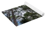 The Pines Of Tallahassee Yoga Mat