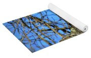 The Search Red Tail Hawk Art Yoga Mat
