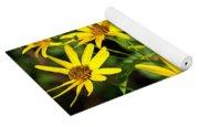 Thin-leaved Sunflower Yoga Mat