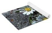 Tiny White Flowers In The Gravel Yoga Mat