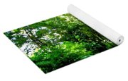 Tree Covered Road Yoga Mat