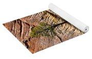 Tree In Flowing Rock Yoga Mat