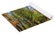 Tree Lined Road Yoga Mat
