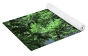 Trees By A Pond Yoga Mat