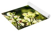Trees Landscape Art Sunlit White Dogwood Flowers Baslee Troutman Yoga Mat