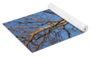 Turkey Vulture Tree Yoga Mat