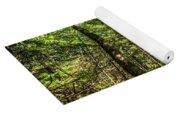 U Shaped Trees Cascade Mountain Ny New York Yoga Mat
