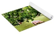 Umbrella Tree Yoga Mat