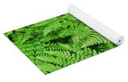 Verdant Ferns Yoga Mat