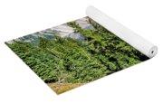 View Of Wizard Island Crater Lake Yoga Mat