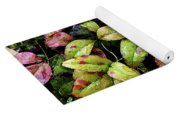 Watercolor Colorful Leaves After A Shower 1771 W_2 Yoga Mat