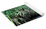 Waterfall In The Fern Garden Yoga Mat