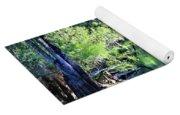 Waterscape #1 Hillsborough River Yoga Mat