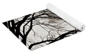 Weeping Willow Tree  Yoga Mat