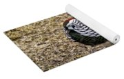 Well Plumed Bird Yoga Mat