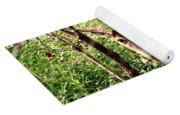 Wild In The Country Yoga Mat