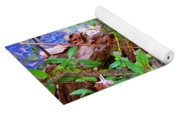 Wildflowers On A Cypress Knee Yoga Mat