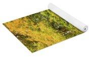 Yellow Trees In Fall Yoga Mat