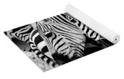 Zebras Triplets Yoga Mat