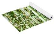 Zen Bamboo Forest Yoga Mat