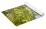 Aspen Canopy With Sun Flare Yoga Mat