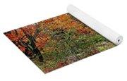 Chikanishing Road In Fall Yoga Mat