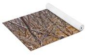 Cottonwood Az Bayou Leafless Trees Scrub Water Sand Clouds 3262019_5320 Yoga Mat