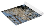 Frost Covered Trees On The Portage Glacier Highway Alaska Yoga Mat