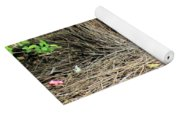 Great Bowerbird With Nut Yoga Mat