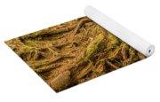 Trail Of Roots Yoga Mat