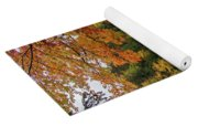 Upper Tahquamenon Autumn Colors -0007 Yoga Mat