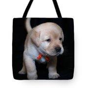 4 Week Old Lab Puppy Tote Bag