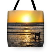 A Mans Best Friend Sunset Tote Bag