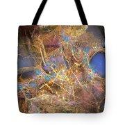 Abstraction 251-03-13 Marucii Tote Bag