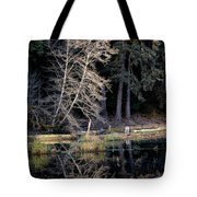 Alder Tree Reflection In Pond Tote Bag