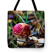 Amanita Muscaria Commonly Known As The Fly Agaric Or Fly Amanita Tote Bag