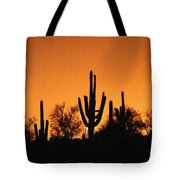Arizona Sagurao Sunset Tote Bag