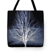 At Maple Hill Park Tote Bag