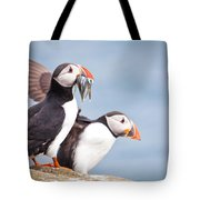 Atlantic Puffin  Fratercula Arctica Tote Bag