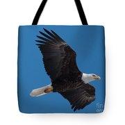 Bald Eagle In Flight 6 Tote Bag