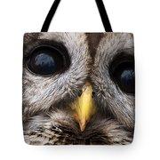 Barred Owl Eye's Tote Bag