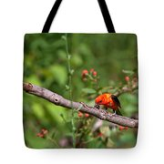 Berry Eating  Scarlet Tanager Tote Bag