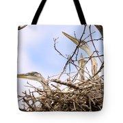 Blue Heron Rookery 7214 Tote Bag