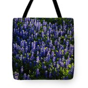 Bluebonnets In The Limelight Tote Bag