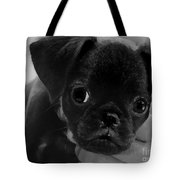 Brussel Griffon Puppy Painting Tote Bag