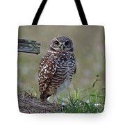 Burrowing Owls - Watching You 3 Tote Bag
