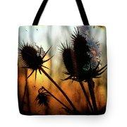C Est La Vie Sunset Tote Bag
