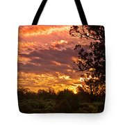 Canyon Dechelly Sunset In Copper And Gold Tote Bag